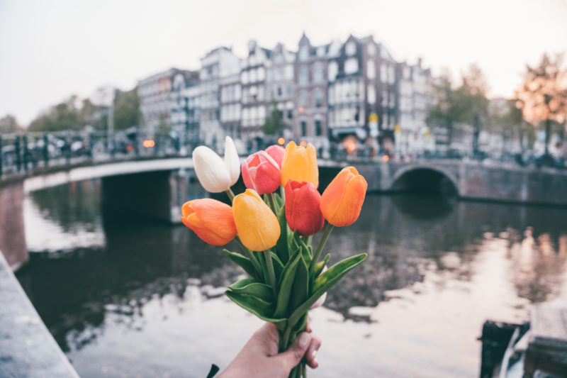 Quick Guide Of The Top Places to Visit In Amsterdam In One Day
