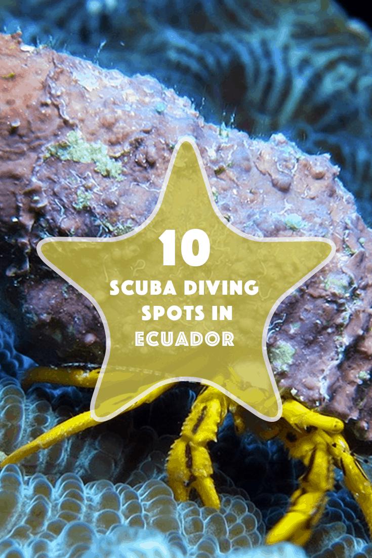 10-scuba-diving-spots-in-ecuador