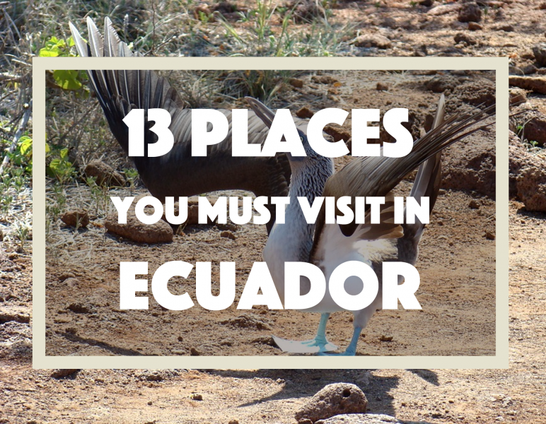 13 Things To Do In Ecuador: Places To Visit and What To Do In Ecuador