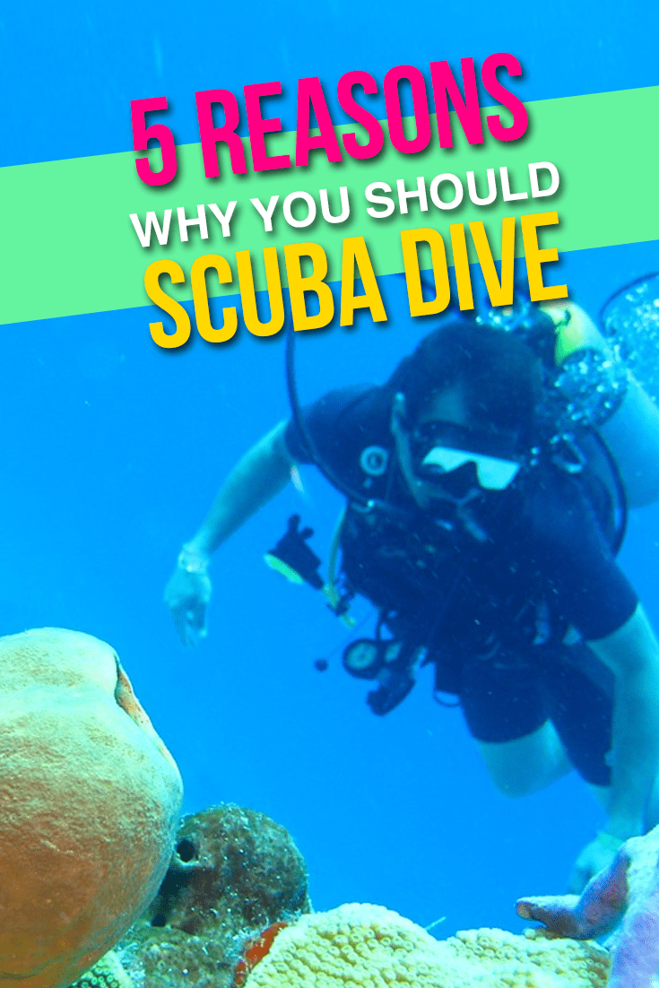 5-reasons-scuba-dive
