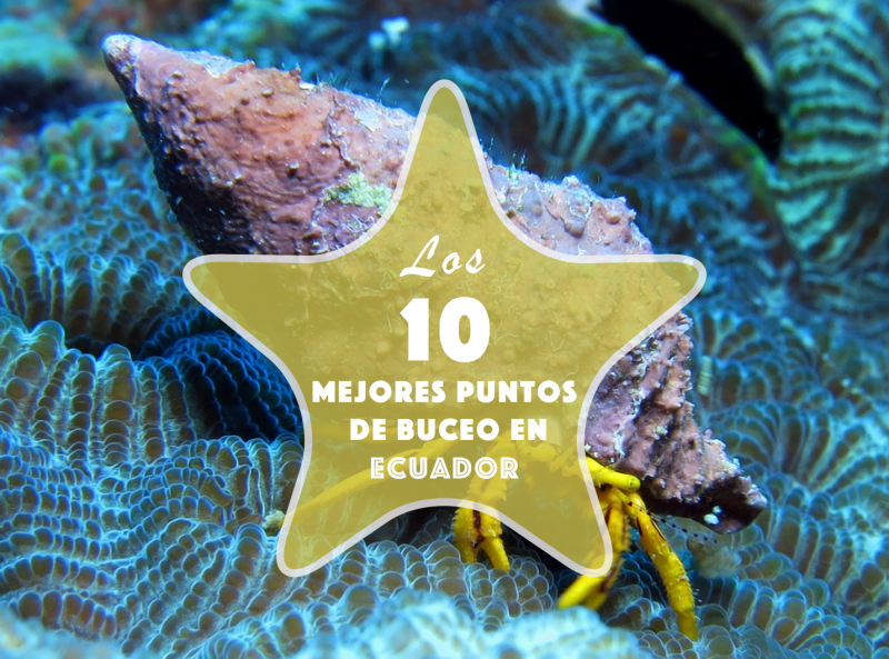 10 Best Places to Scuba Dive in Ecuador