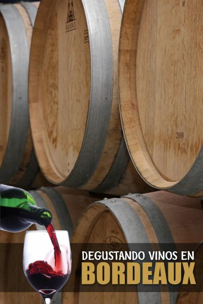 degustando-vinosdegustando-vinos