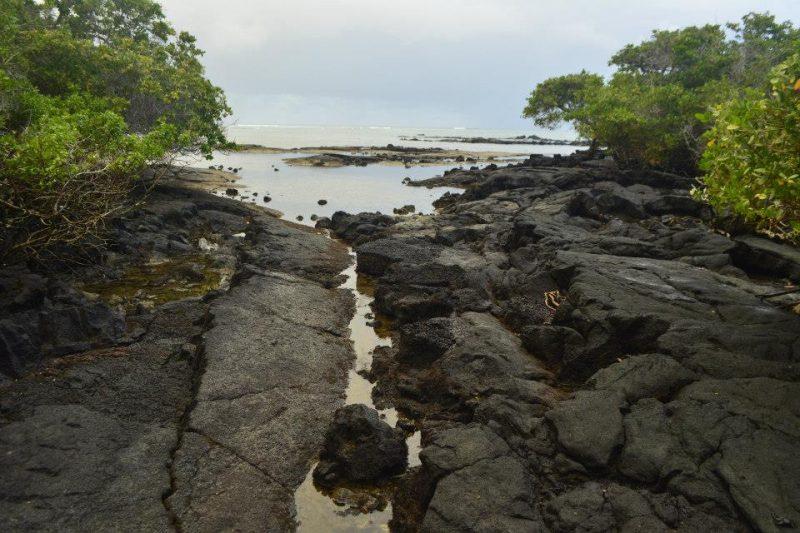 Playa del amor Galapagos Isabela