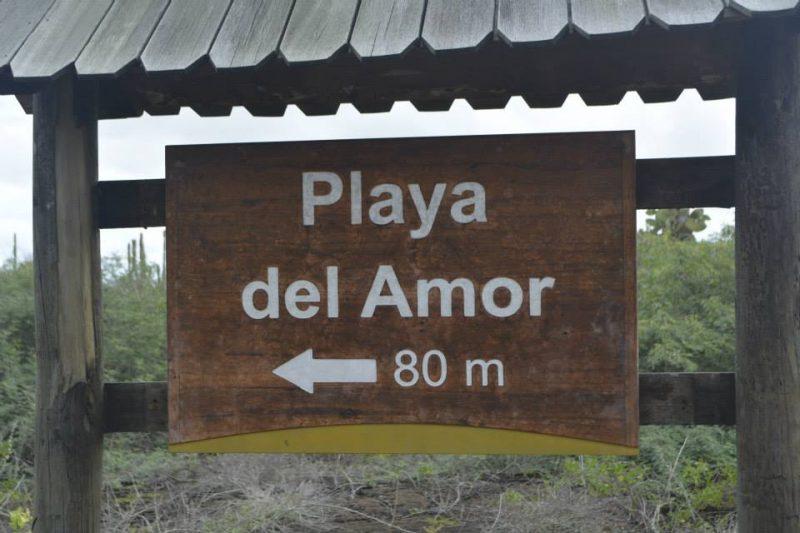 Playa Amor Isabella