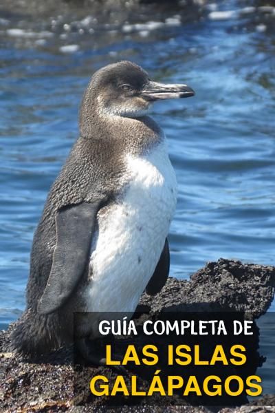 Guía de Viaje a las Islas Galápagos