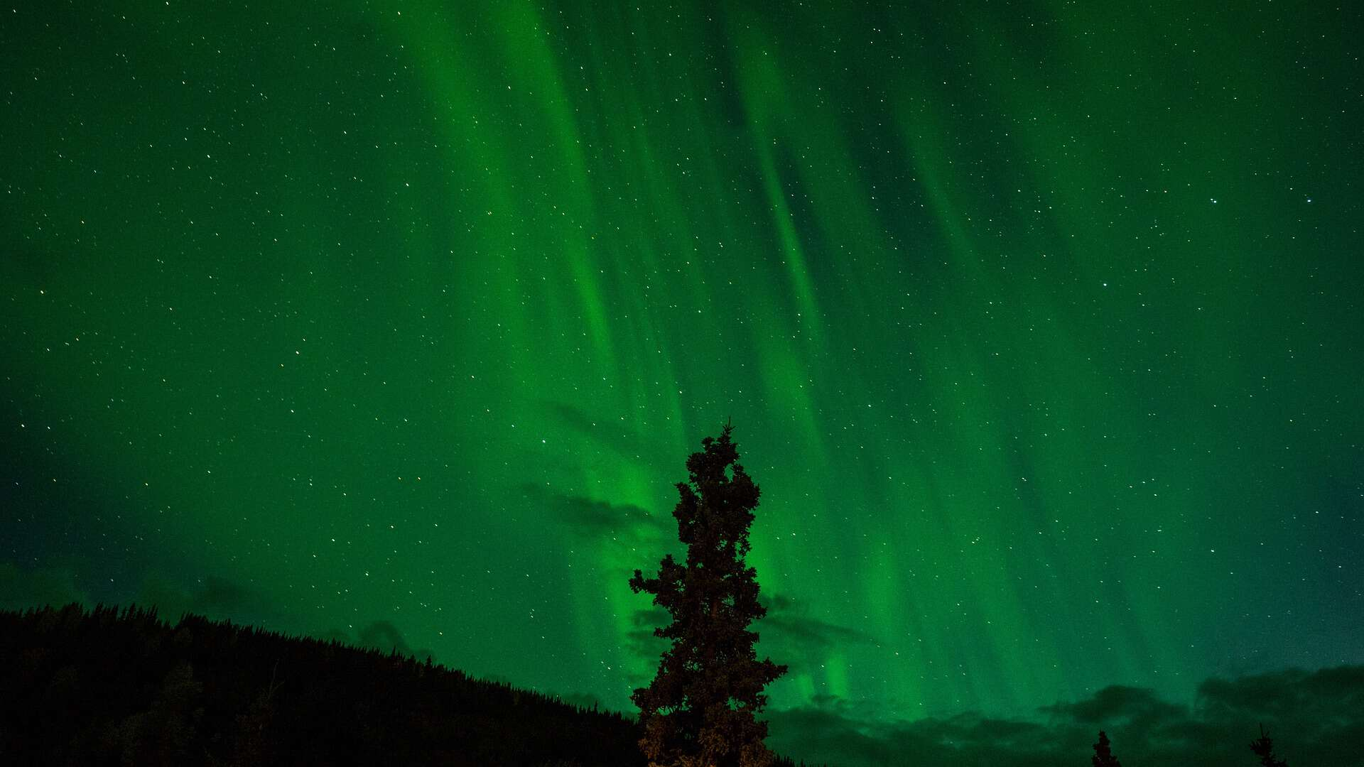Get Enchanted by the Northern Lights