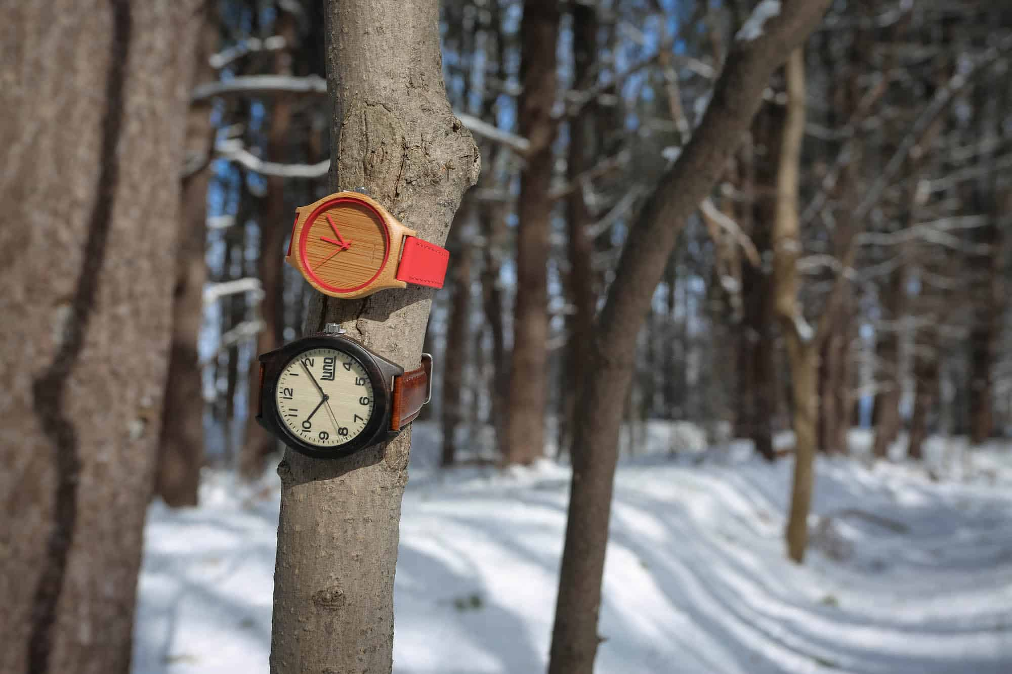 Bamboo Watches Luno Wear