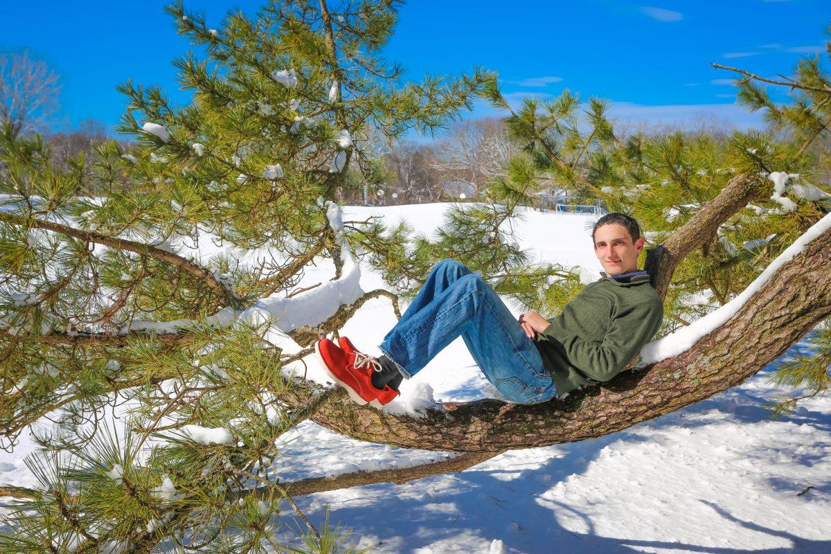 Sitting on a tree enjoying winter