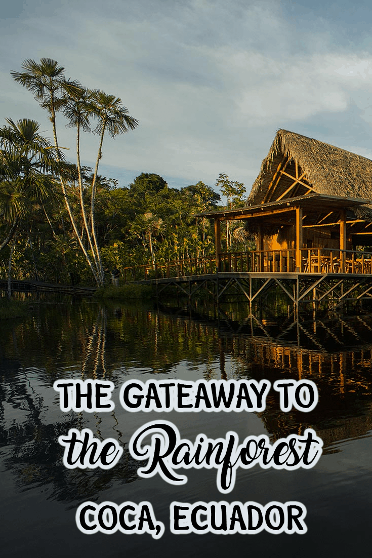 Pinterest What to do in the rainforest in coca