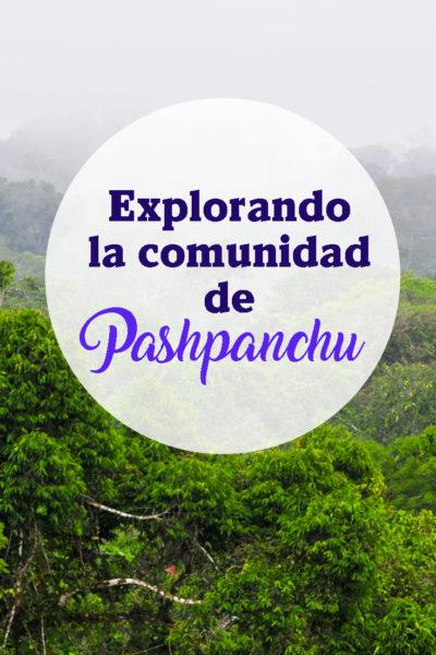Explorando la comunidad de pashpanchu