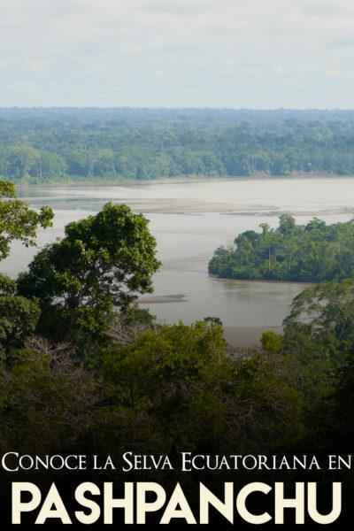 La selva ecuatoriana en pashpanchu