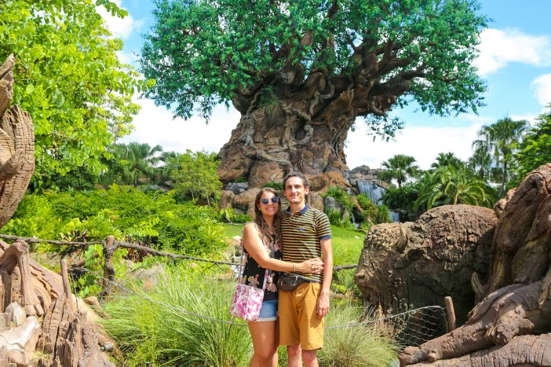 How To Have The Ultimate Walt Disney World Vacation