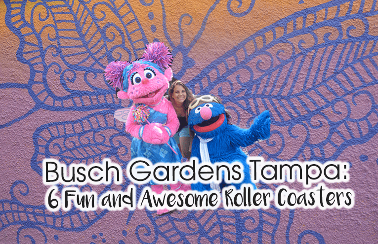 Busch Gardens guide: The Best Roller Coasters in Busch Gardens Tampa