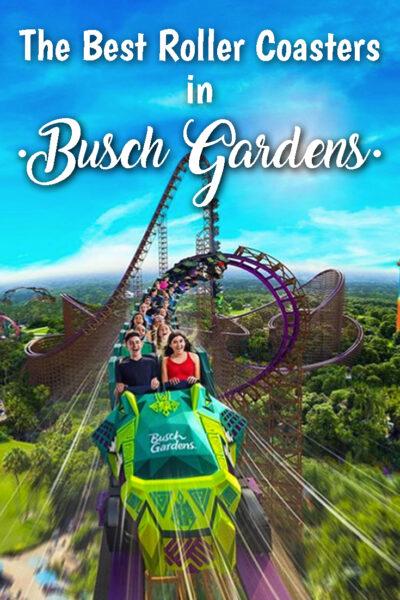 The Best roller coasters in Busch Gardens