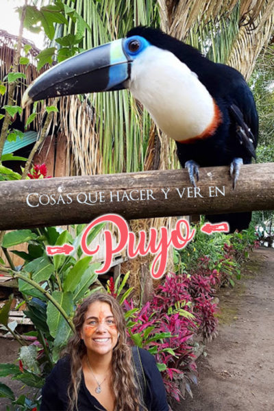 Que hacer y que ver en Puyo en dos días: Explorando la selva tropical en Ecuador
