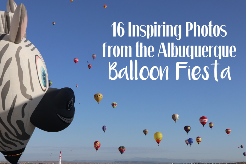 16 Magnificent Photos from The World's Largest Hot Air Balloon Festival