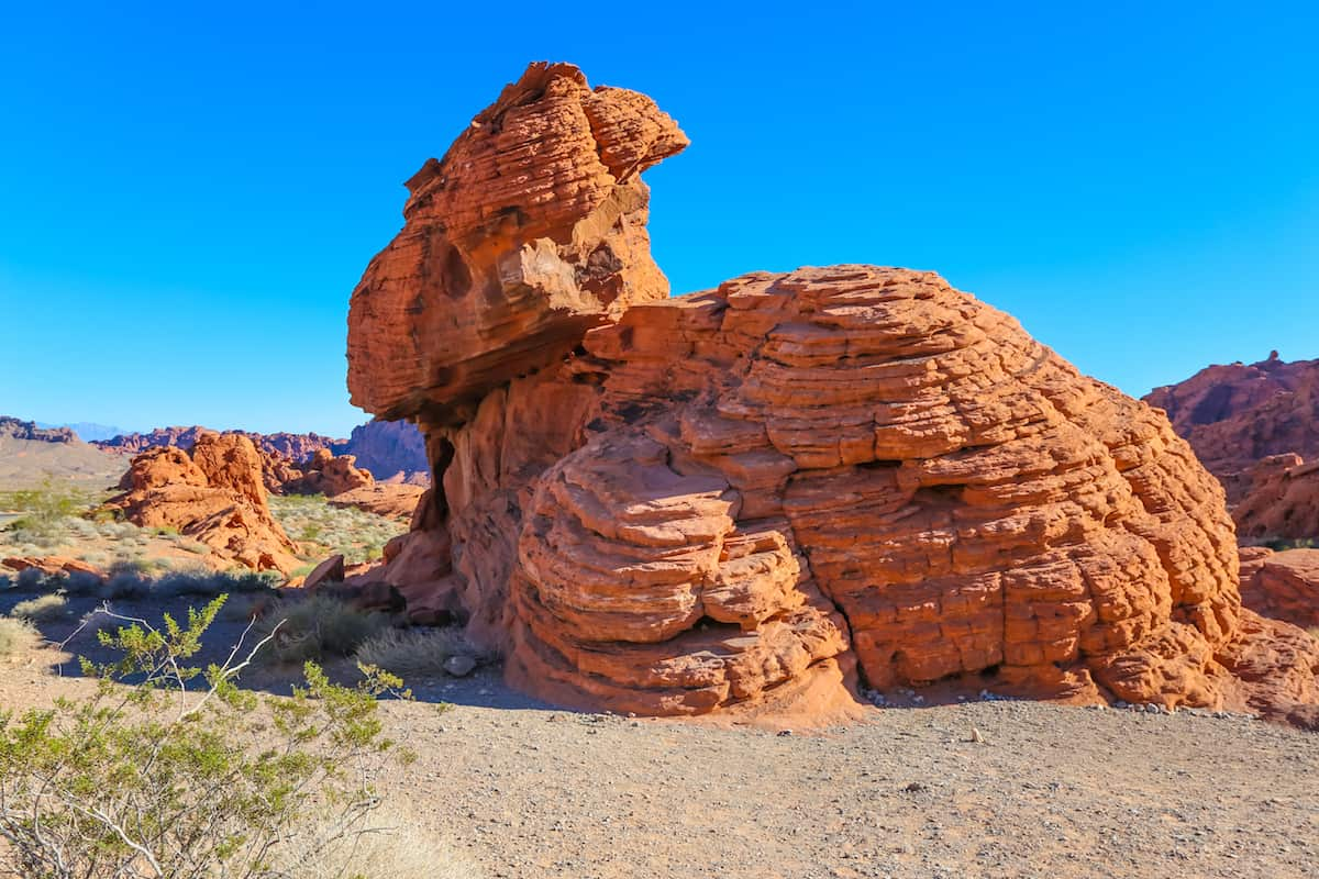 A Complete Guide To Nevada's Valley of Fire State Park Behaves