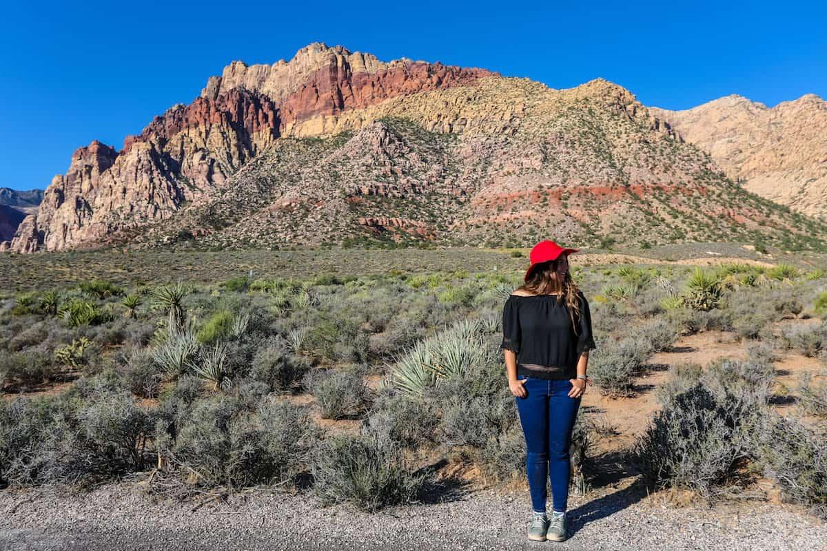 disfrutando de Área Nacional de Conservación Red Rock Canyon