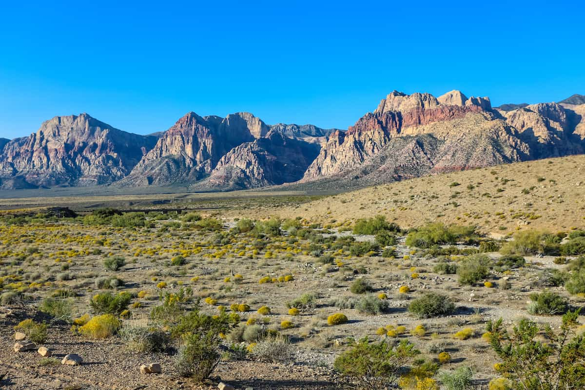 Área Nacional de Conservación Red Rock Canyon