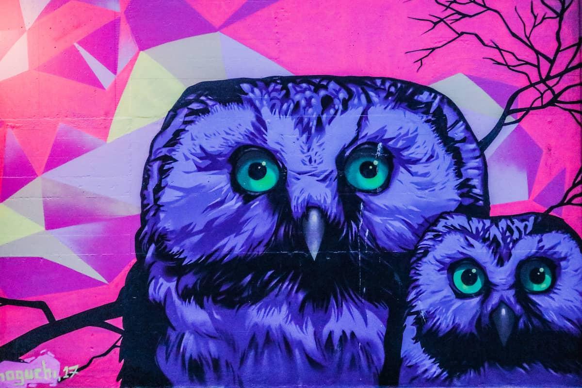 Mural Owl Oslo