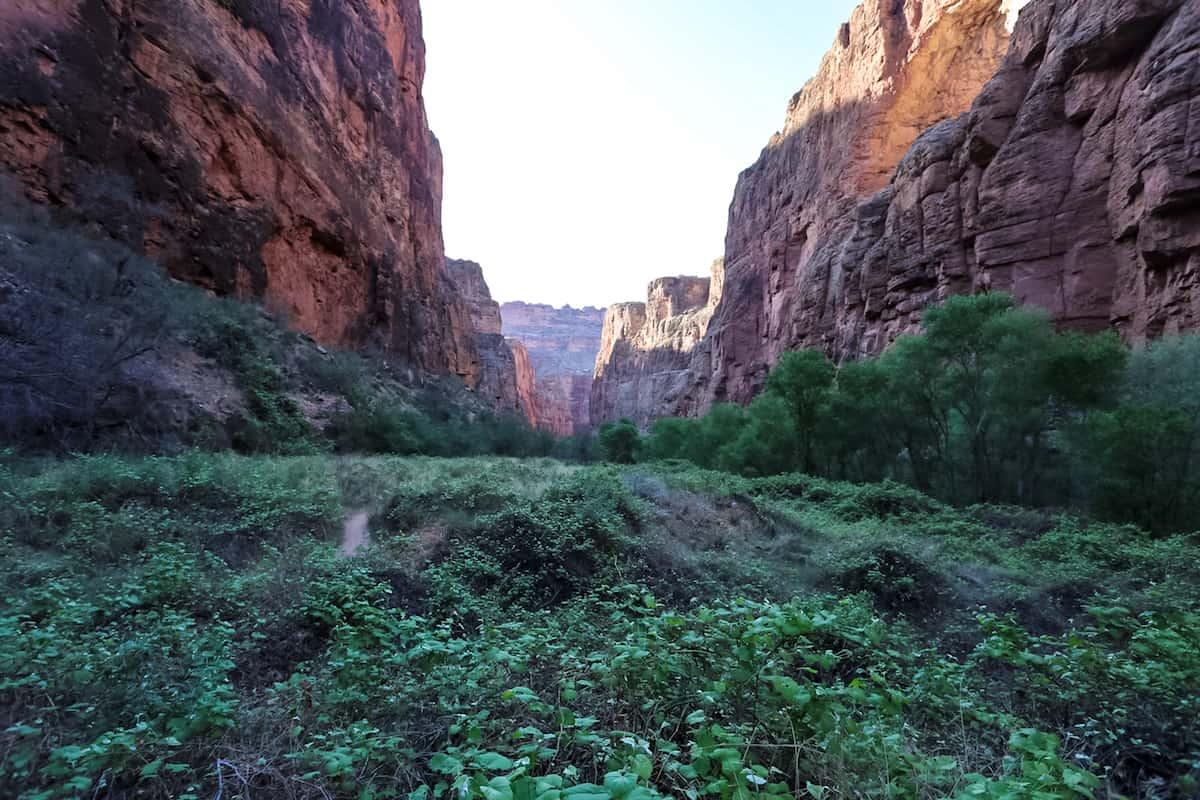 Havasu Falls Canyon