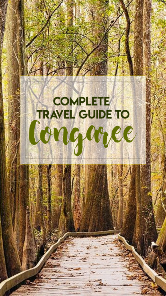 Complete Travel Guide Congaree