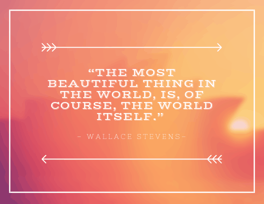 """The most beautiful thing in the world, is, of course, the world itself."""