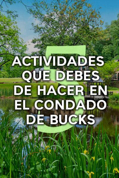 5 actividades por hacer en el condado de Bucks