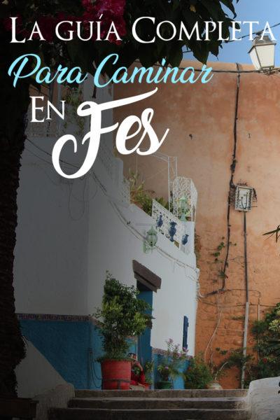 Guía completa para ver y caminar en Fez