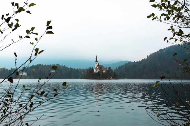 Lake Bled from the water