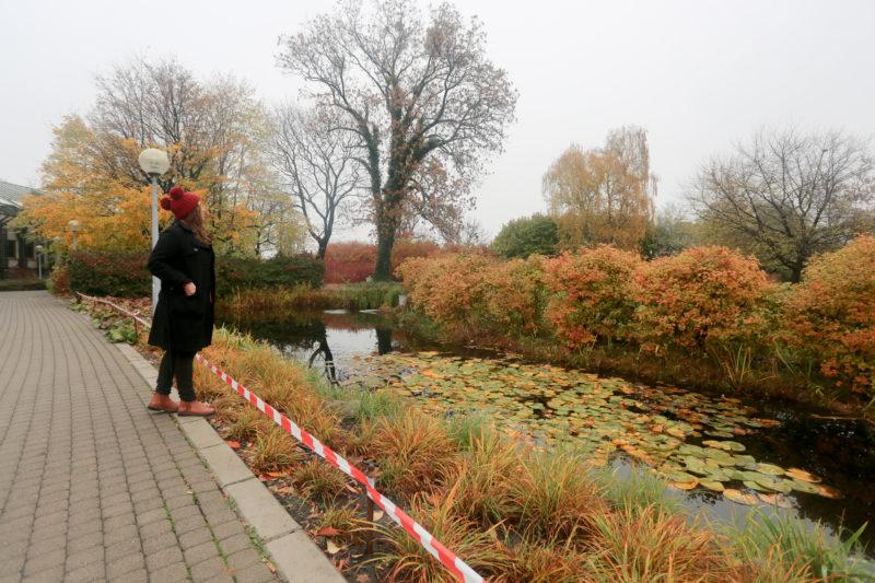 Jardín de la azotea de la biblioteca de la Universidad de Varsovia