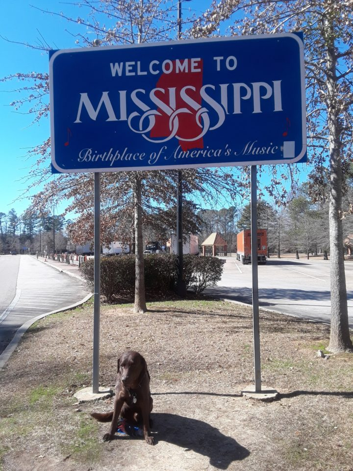Traveling with a dog Mississippi