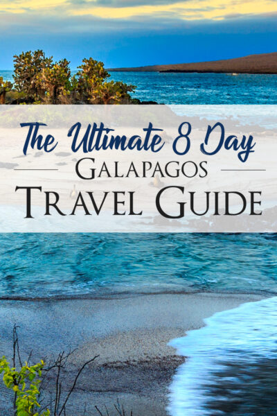 Galapagos On a Budget: The Ultimate 8 Days Galapagos Travel Guide. The best itinerary of 8 days to explore Galapagos on your own