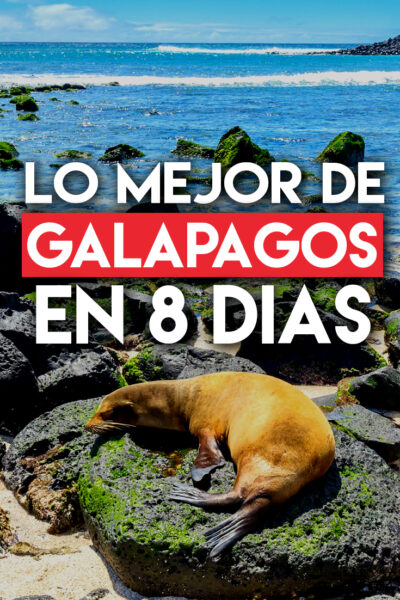 Lo mejor de Galápagos para visitar en 8 días