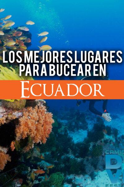Los mejores lugares para bucear en Ecuador