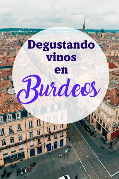 Degustando Vinos en Burdeos