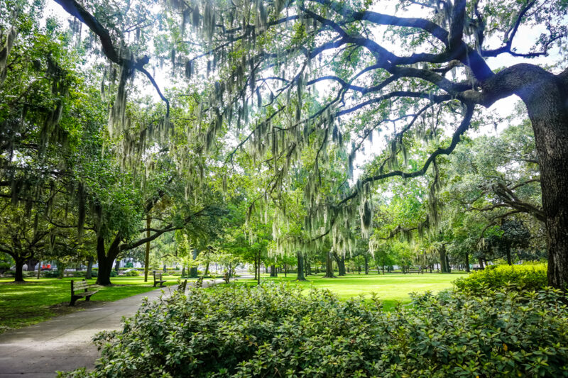 The Best Things To Do in Savannah, Georgia in 3 Days