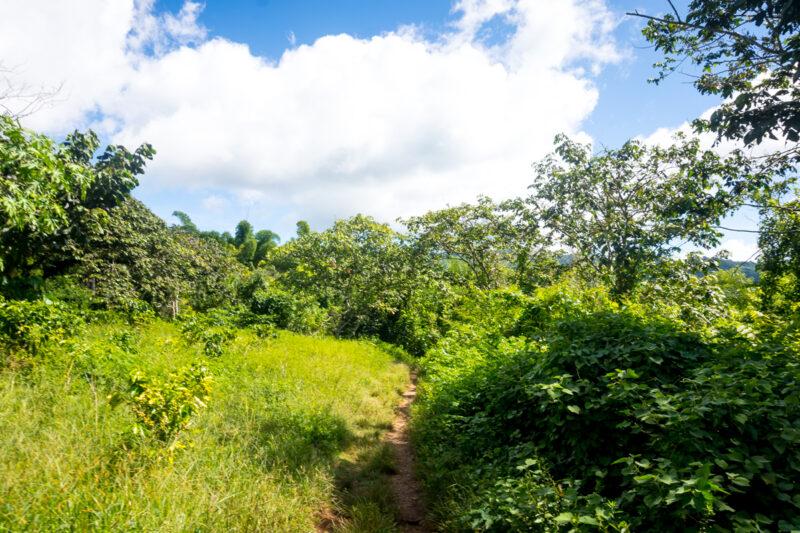 Trinidad-Visit the natural parks
