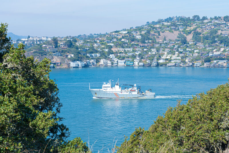 The Complete Tiburon Travel Guide - The Perfect Day Trip From San Francisco