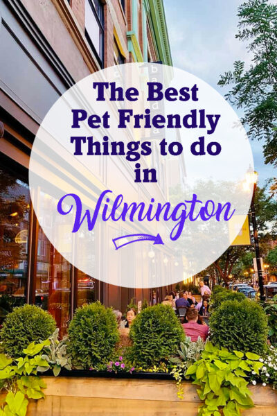 The best pet friendly things to do in Wilmington