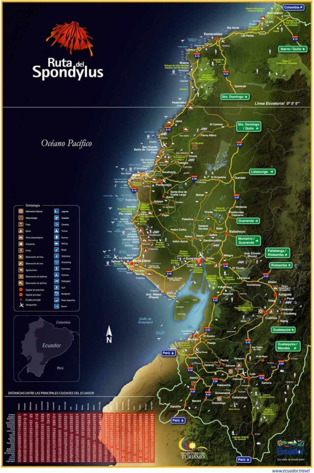 mapa ruta spundylus